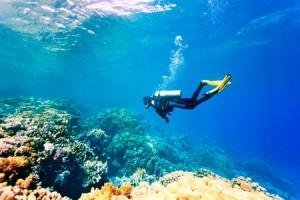 scuba diver in clear water